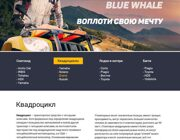 website creation extreme sports